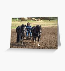 Working Horses in Gippsland  Greeting Card