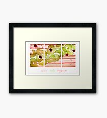 Rhubarb, Celery and Pomegranate Framed Print