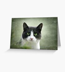 Nobody Knows the Troubles I've Seen 2 Greeting Card