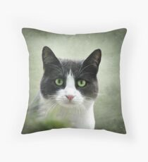 Nobody Knows the Troubles I've Seen 2 Throw Pillow