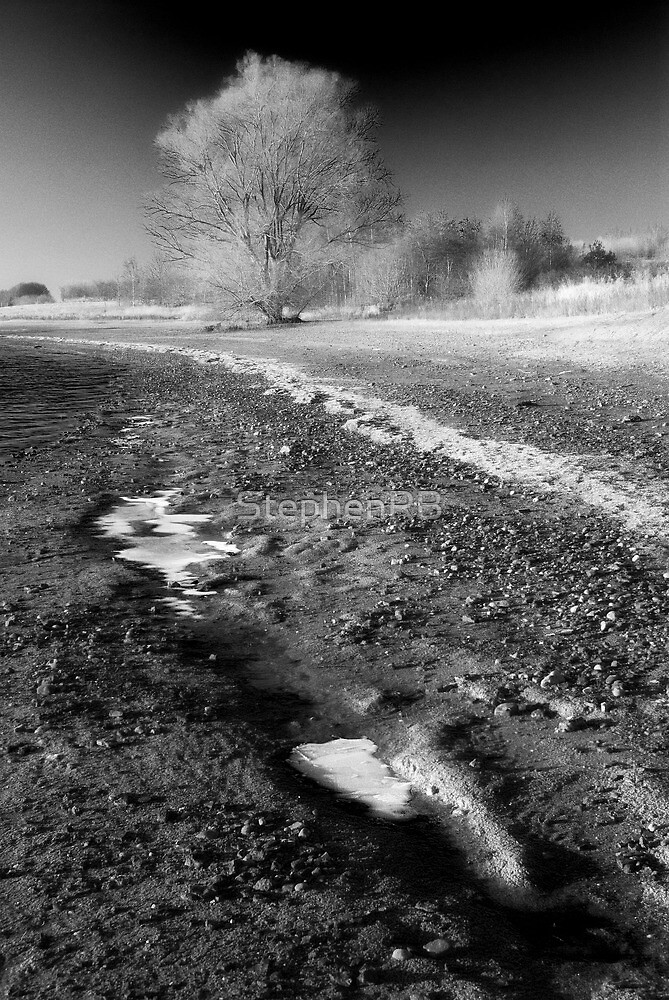 Frozen shoreline  by StephenRB