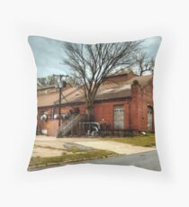 Waco Waterworks Throw Pillow