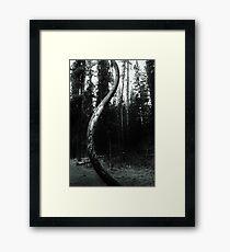 Curvature Framed Print