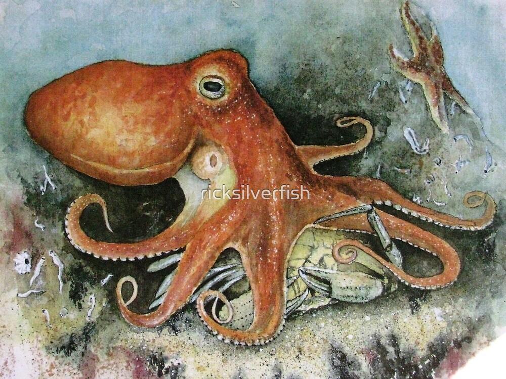 Octopus by ricksilverfish