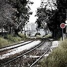 Train Rails by Apostolos Mantzouranis