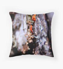 Ladybugs Throw Pillow