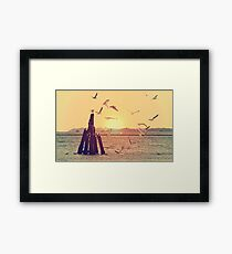 Seagulls at the sea Framed Print