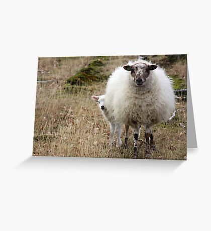 Don't be so Shy - It is Spring Greeting Card