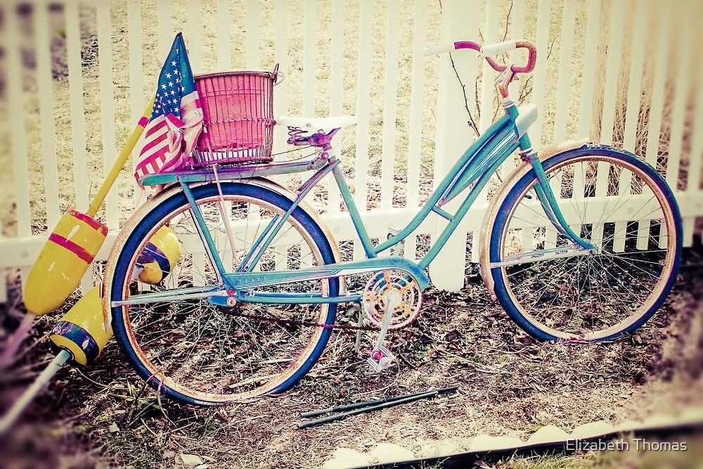 Vintage Retro Antique Bicycle by Elizabeth Thomas
