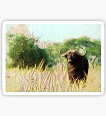 Water Buffalo Sticker