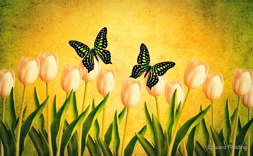 In the Butterfly Garden by Edward Fielding