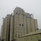 Silos To The Sky by WildestArt