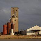 Old Bogards Mill by WildestArt