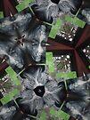 Kaleidoscope Me by Anthea  Slade