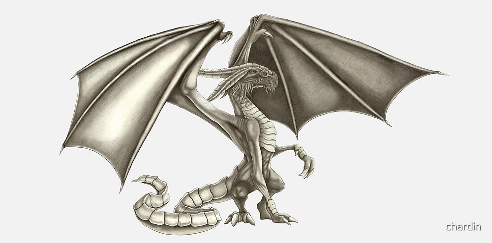 Dragon by chardin