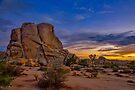 Joshua Tree Sunset by photosbyflood