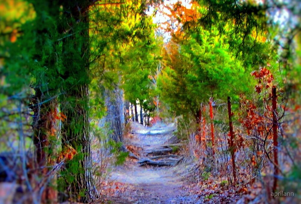 Forest Path by aprilann