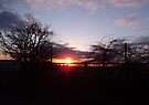 Evening Sunset 2 by Chris Goodwin
