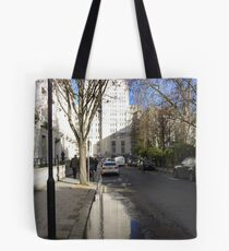 Predilection for Reflection 7 Tote Bag