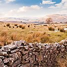 A Dales View by Stephen Knowles