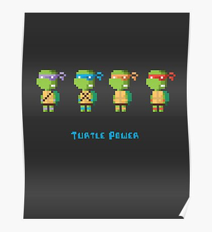 Turtle Power Poster
