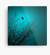 sparrow (002)  Metal Print