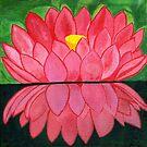 pink lotus by Barbara  Strand