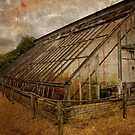 Green house waiting for repair. by Karen  Betts
