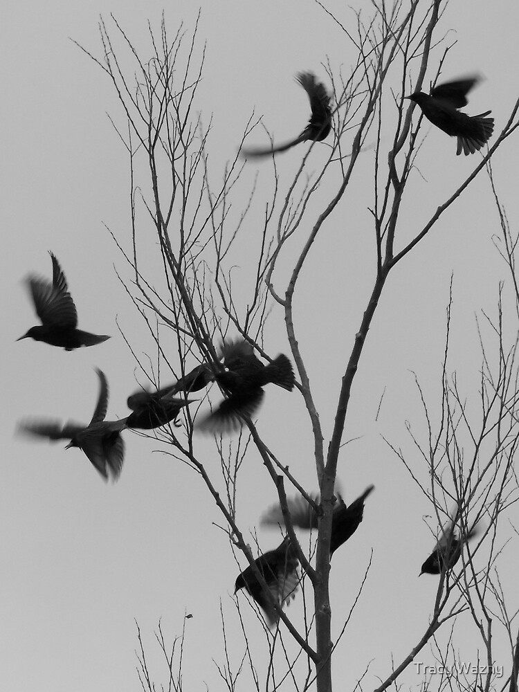 Flight by Tracy Wazny