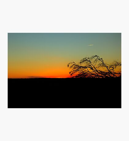 Time to Head Home   Rural NSW  Australia  Photographic Print