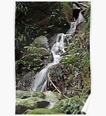 Unnamed falls 1 Poster