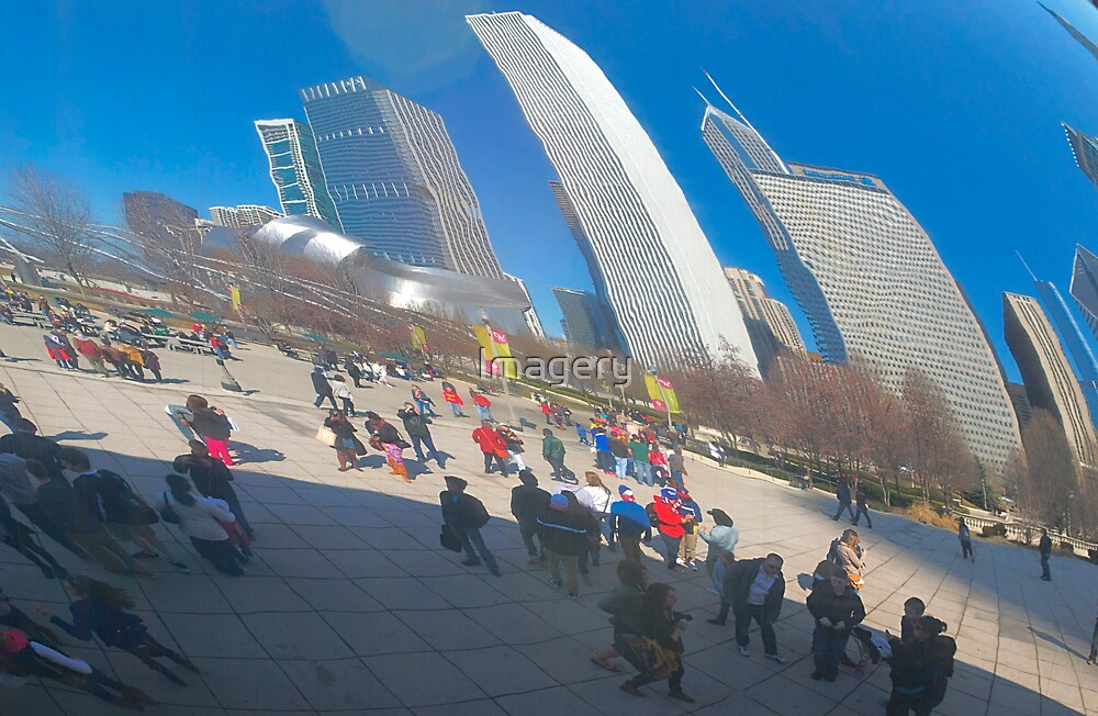 Bean  Reflections by Imagery