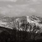 Cader Idris by ClaireWroe