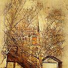 1930 Grain Silo by pat gamwell
