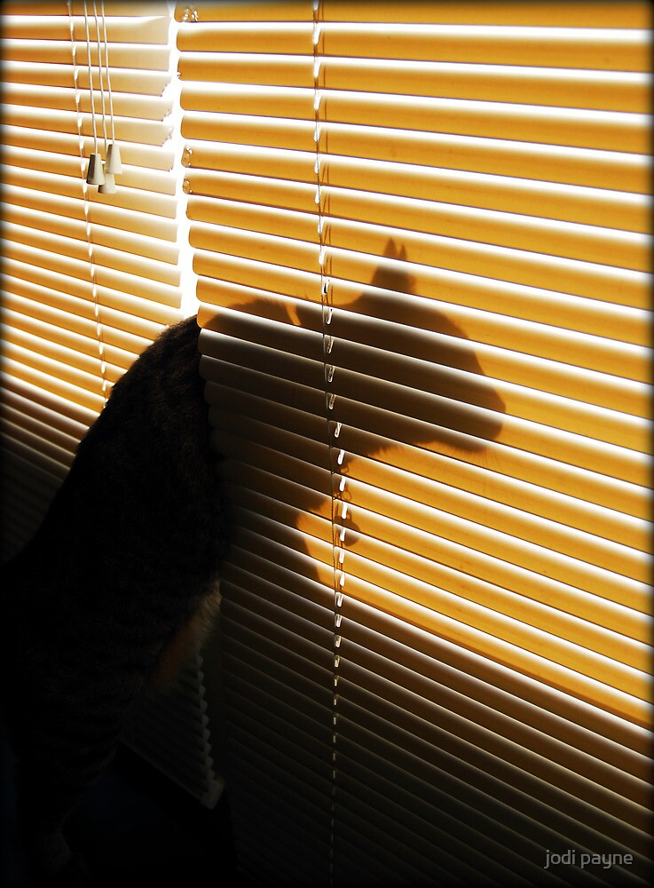 The Beast In The Window by jodi payne
