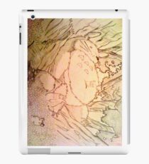 Sleeping Totoro iPad Case/Skin