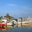 Lewes Harbor by Jack Ryan