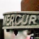 MERCURY by gregAllore