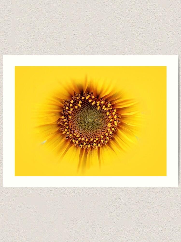 Alternate view of sunflower Art Print