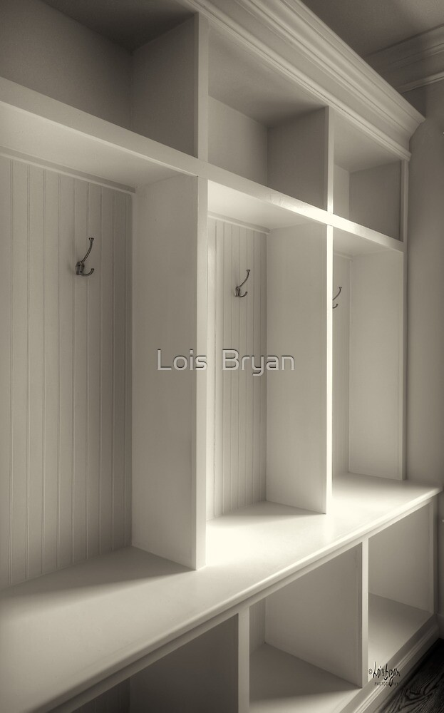 Cubbies by Lois  Bryan