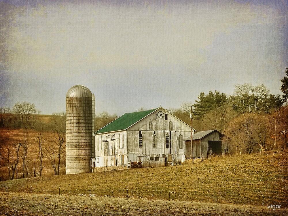 Beautiful Barn by vigor