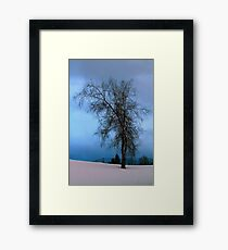 Near the Tennis Courts Framed Print