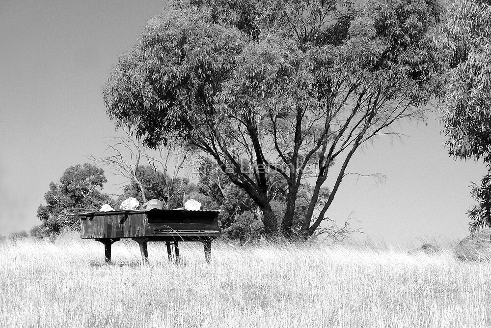 Piano Graveyard - Grand on the Hill by Erika Lieftink