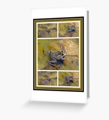 PICKEREL FROG - Rana Palustris Greeting Card