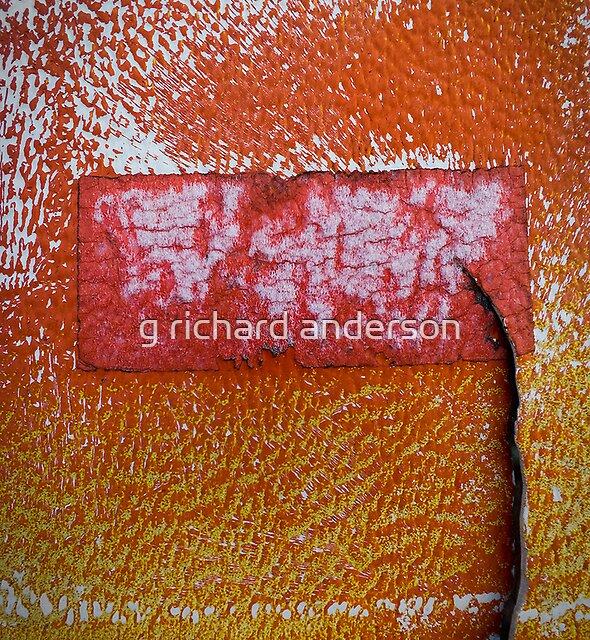 orange frosty by g richard anderson