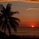 palm,phuket by fazza