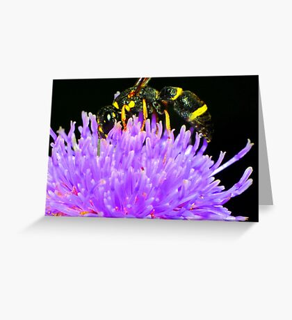 Bee in Flower Greeting Card