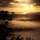 Sunrise Mist..... by debsphotos