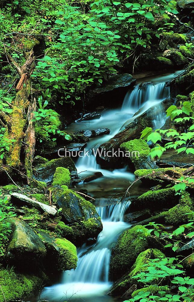 MOUNTAIN STREAM by Chuck Wickham