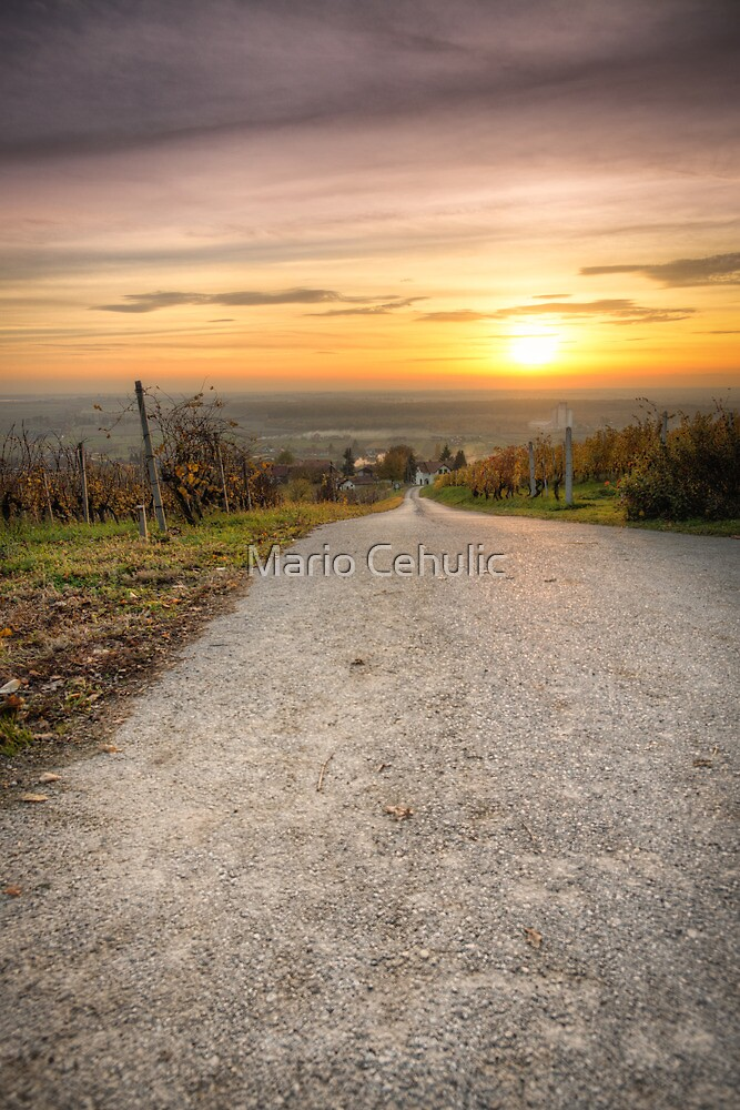 Road to the sun rural landscape photo by Mario Cehulic